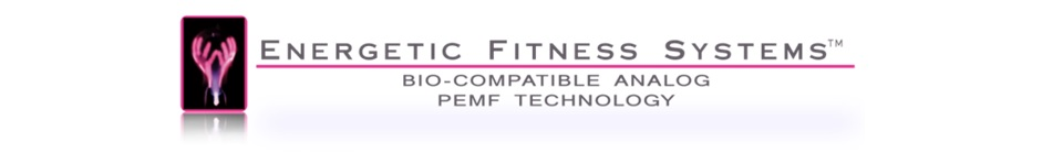 Energetic Fitness Systems